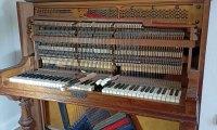 Z miłości do instrumentów